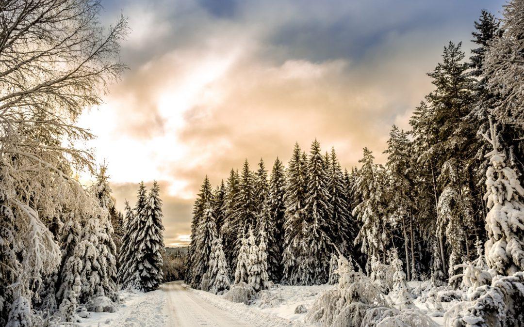 Nasveti za varno vožnjo v zimskih razmerah