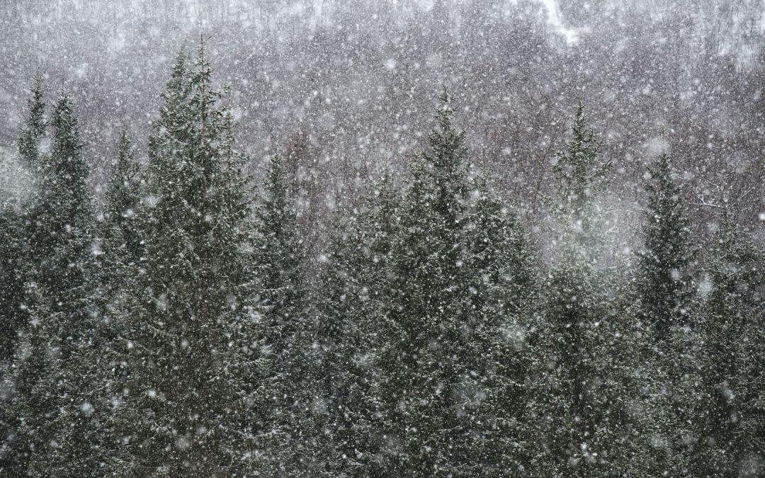 Nasveti za varno vožnjo pozimi in v zimskih razmerah